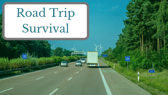 How to Enjoy an 8-hour Road Trip with Young Kids
